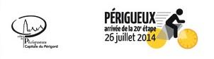 Musée, Périgueux